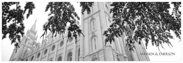 winter   01.jpg